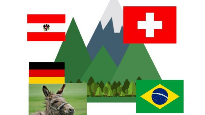 Trabalhar entre Alemanha, Áustria ou Suíça – Onde amarrar seu cavalo?
