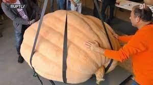 Abóbora com 744 kg conquista o primeiro lugar em festival na Alemanha